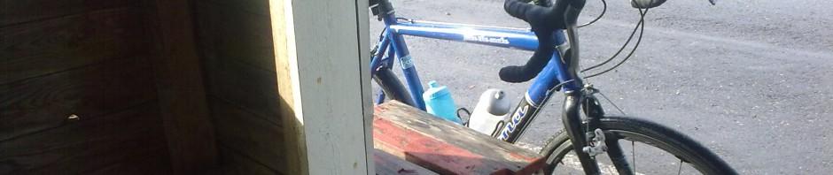 Pyöräilevä toimistorotta